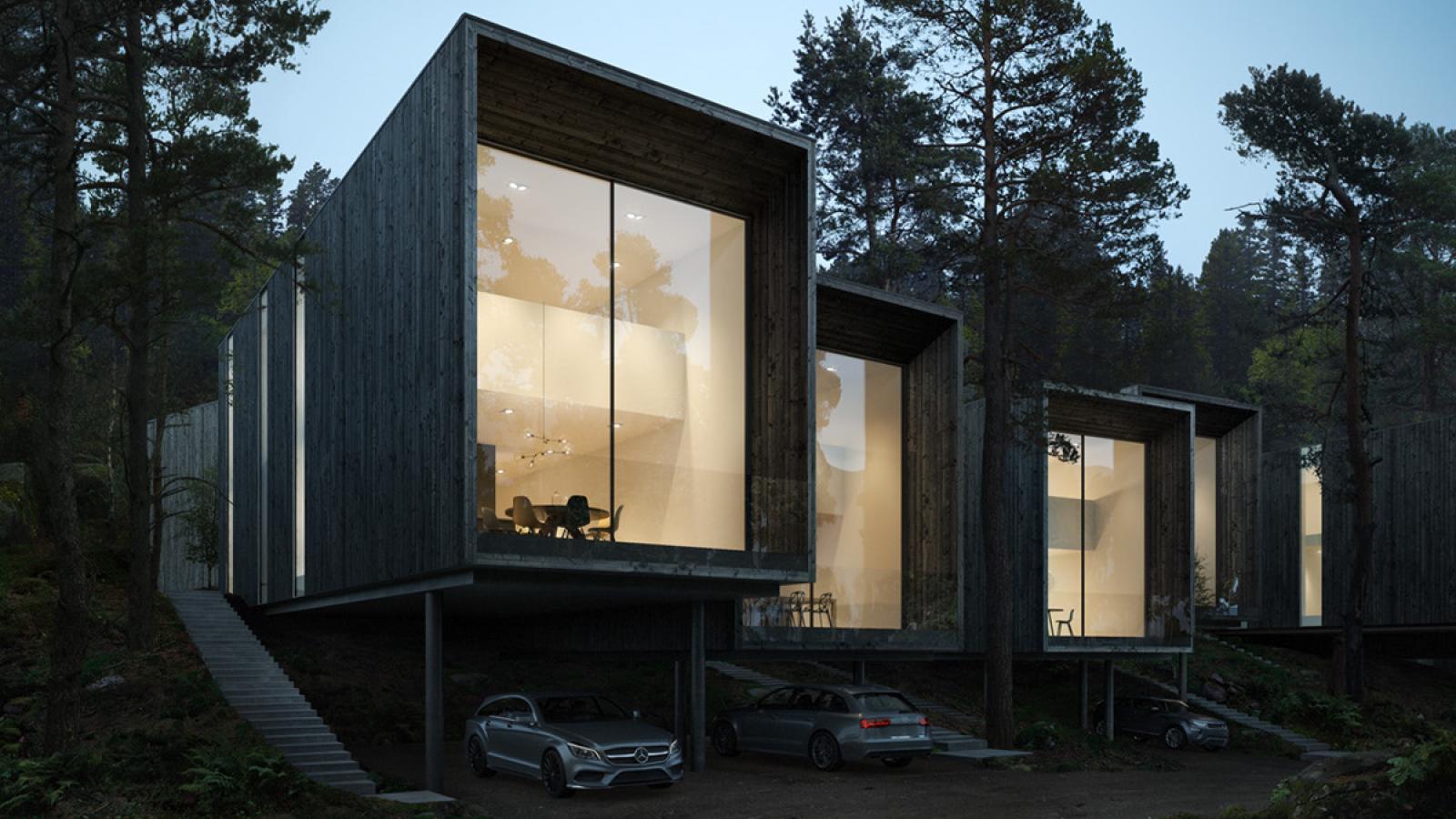 Forest of Sweden
